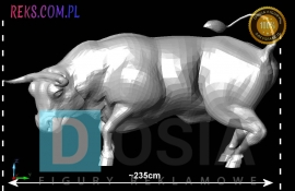 bull-side