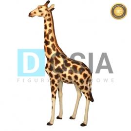 ZW17 - Żyrafa figura reklamowa,dekoracyjna