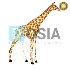 ZW16 - Żyrafa figura reklamowa,dekoracyjna
