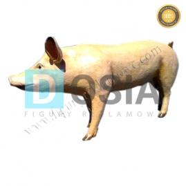 FZ56 - Świnia figura reklamowa, dekoracyjna